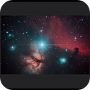 Flame and Horsehead nebulae near Alnitak in Orion,                                Mike