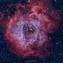 The Rosette Nebula,                                Eric Watson
