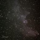 Witch Head Nebula (IC2118),                                David Wright