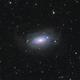 M63 Sunflower Galaxy - LRGB,                                Zheng Fu