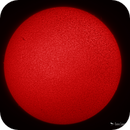 Solar H-Alpha Mono vs OSC Comparison,                                Damien Cannane