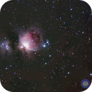 M42,                                Newton Cesar Florencio