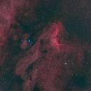 IC 5070 - Pelican Nebula,                                David Goldstein