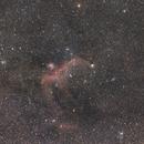 IC2177-Mövennebel,                                Peter Markert