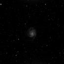 M101,                                Gary McFall