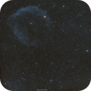 SH2-308 The Dolphin Head Nebula,                                John