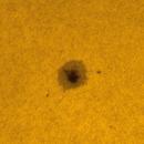 Sunspot group №2824 22.05.2021.,                                Sergei Sankov