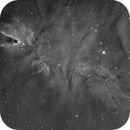 NGC2264 Cone Nebula,                                Ted D.