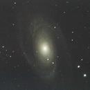 M81 - Bode Galaxy,                                Michael Thurston