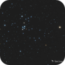 The S Cluster,                                Damien Cannane