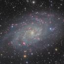 Triangulum Galaxy,                                Nippo81