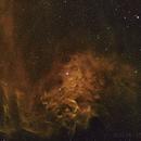 Flaming Star Nebulae ,                                Thilo Frey