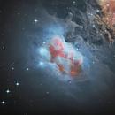 Running Man Nebula NGC 1977,                                Tom Marsala