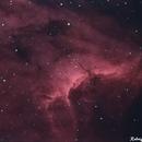 Pelican Nebula,                                Rodrigo Andolfato
