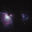 Great Orion Nebula & Running Man Nebula,                                catatafish