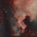 North America NGC 7000,                                Dmitrii
