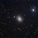 NGC 488,                                Tom Harrison