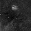 SH2-112,                                pleiade2004