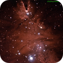 NGC2264 - Christmas tree cluster, Cone and Fox Fur nebula in Monoceros,                                Mataratzis
