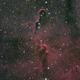 Elephant's Trunk Nebula,                                Samuel