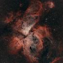 NGC 3372 Eta Carinae,                                Gabriele Gegenbauer