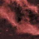 NGC 1499 The California Nebula,                                Greg Ray