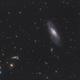 M106 LRVB Newton 150/750,                                guillau012