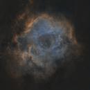 Rosette (Skull) Nebula Starless,                                Kameron Hover