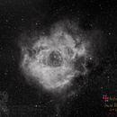 AutoMosaic test 2x2 on Rosette nebula by AstroMuch,                                Yabu Gaillé