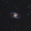 M44,                                Teagan Grable