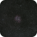 A Rose in Space,                                astropical