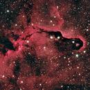 The Elephant Trunk IC1396,                                Ryan1776
