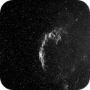 NGC 6992 Veil nebula,                                Frank Rauschenbach