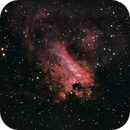 M17 Omega Nebula (Swan Nebula),                                WayneAnderson