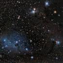 IC2169 Medium Field,                                Ron Crouch