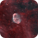 The Crescent Nebula & Soap Bubble Nebula (++ OIII),                                Arun H.