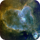 Heart Nebula, IC 1805,                                Loran Hughes