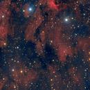 Pelican Nebula,                                Michael Finan