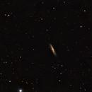 M98,                                gibran85
