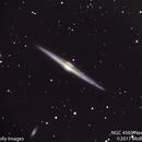 NGC 4565 Needle Galaxy,                                Molly Wakeling