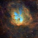 IC 410, The Tadpoles Nebula, Hubble Palette,                                Eric Coles (coles44)