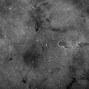 IC 1396  - Elephant's Trunk Nebula,                                alphaastro (Rüdiger)