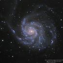 Pinwheel Galaxy M101,                                Yokoyama kasuak
