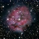 Cocoon Nebula (Caldwell 19),                                PepeLopez