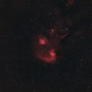 Flaming Star widefield,                                Michael Kohl