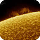 Solar Prominence I, Hydogen Alpha, Colored, April 25th 2018,                                Martin (Marty) Wise