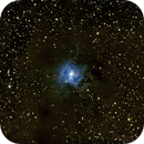 NGC 7023 - Iris-Nebel,                                Martin Luther