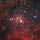 NGC6910 Ha RGB,                                Christopher Gomez