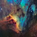 Pelican Ridge (IC 5067),                                Gary Lopez