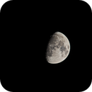 Moon - Golden Handle,                                Günther Dick